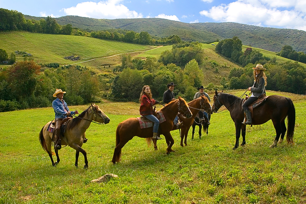 Horseback Riding Tour – Yourcab