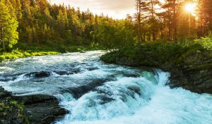 mountain-river-optimized2